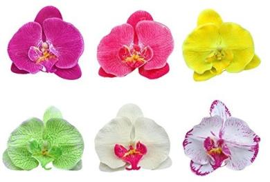 Cream Boolavard® TM Orchid Flower Hair Clip Bridal Hawaii Party Girl