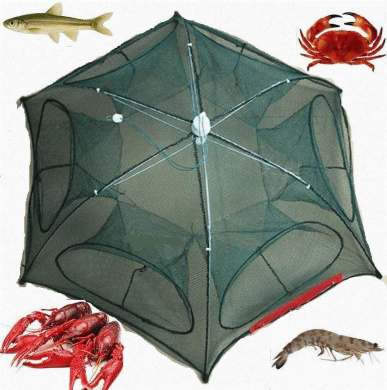 6//12 Holes Automatic Fishing Net Shrimp Cage Nylon Foldable Crab Minnow Lobster Crawfish Trap Cast Vbestlife Fishing Net Trap