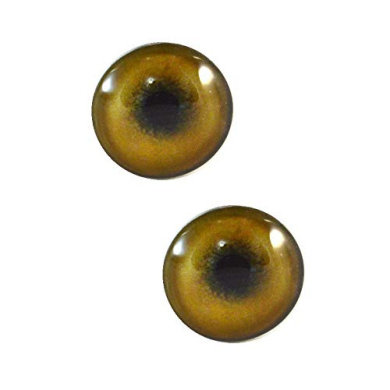Taxidermy 30mm Brown and Teal Cat or Dragon Glass Eyes Pair for Art Dolls Fursuits Masks Props Jewelry Making and More Sculptures